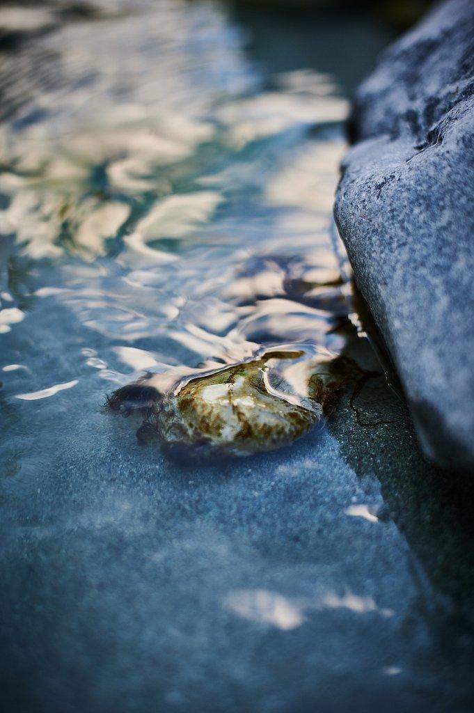 Softened-Water.jpg